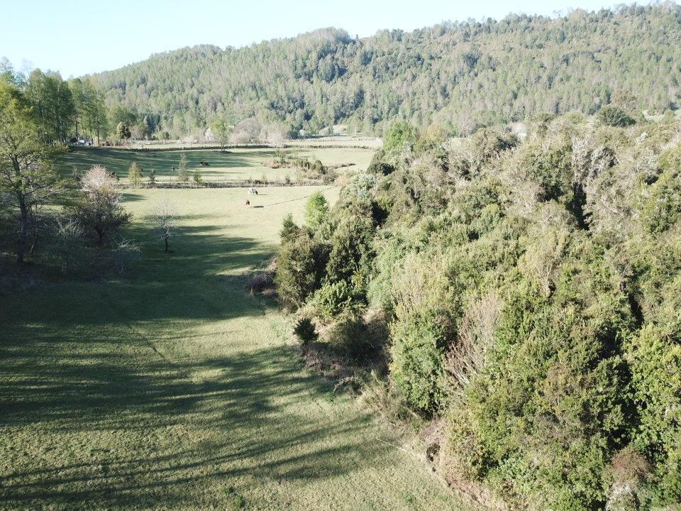 Panguipulli, parcela 5,6 ha