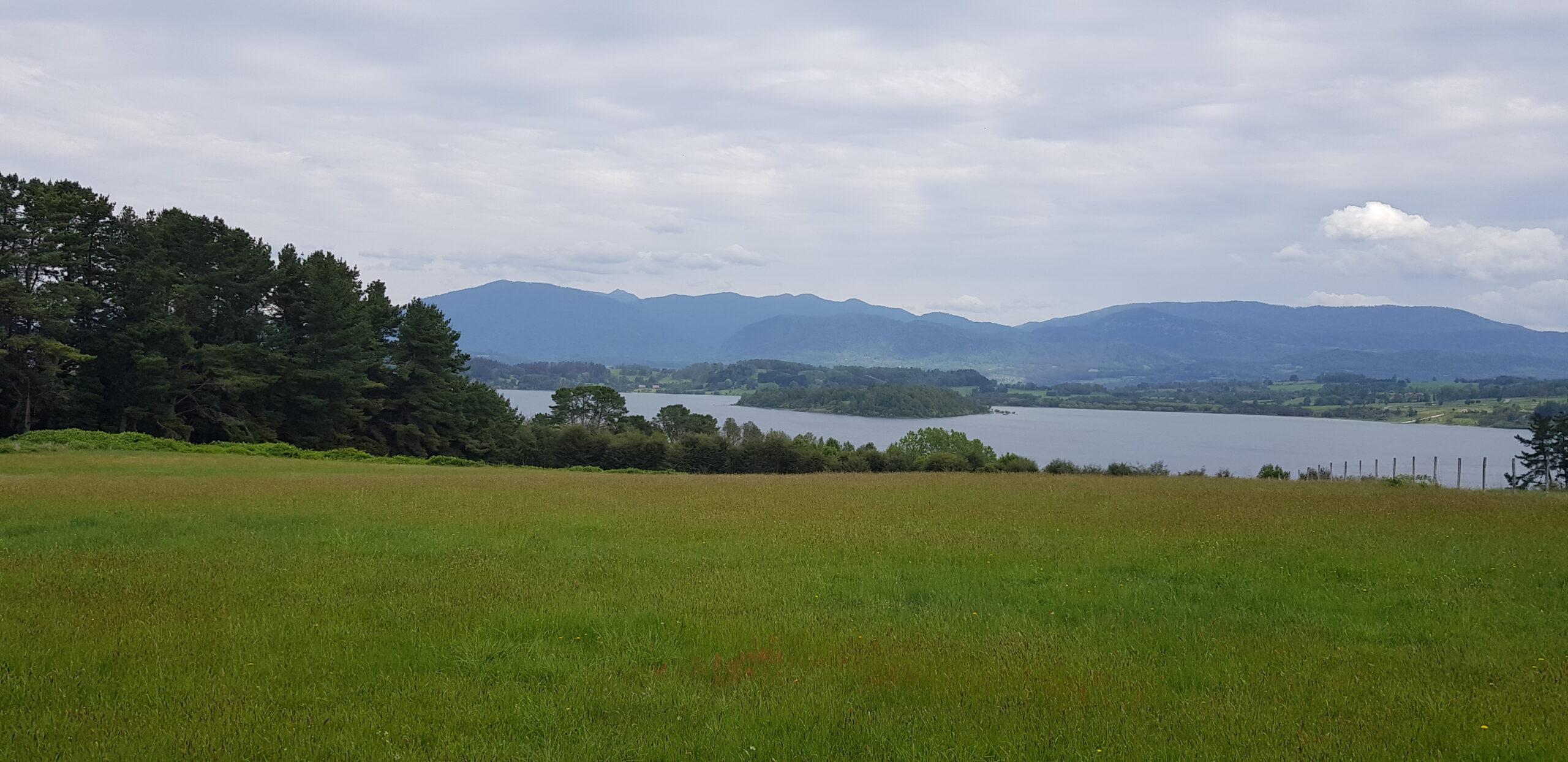 Panguipulli 3 ha / con acceso lago